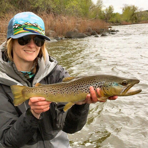 Frying pan anglers frying pan roaring fork and colorado for Colorado fishing guide