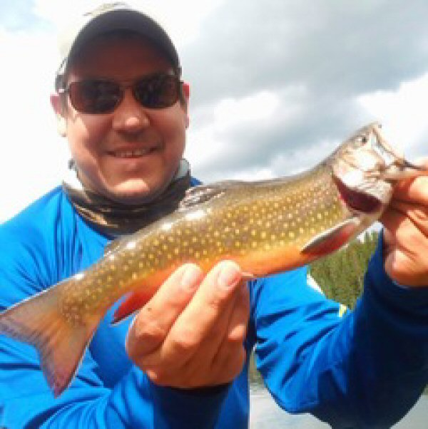 Frying pan anglers guides guided fly fishing trips for for Trout fishing in alabama